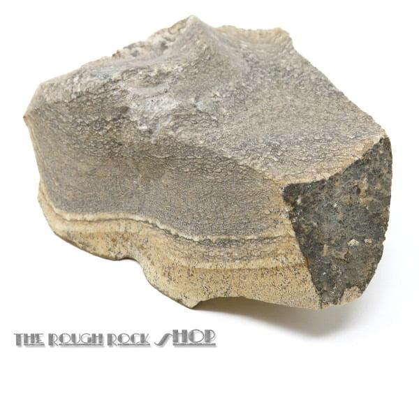 Kalahari Picture Stone rough (010) 342 grams